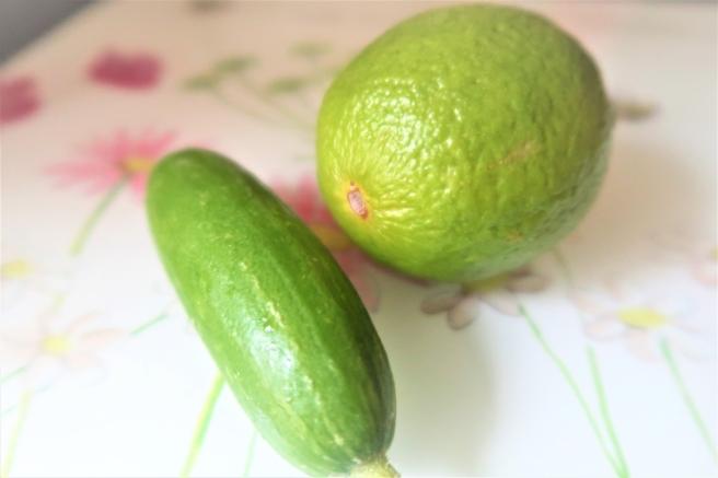 ogórek limonka1